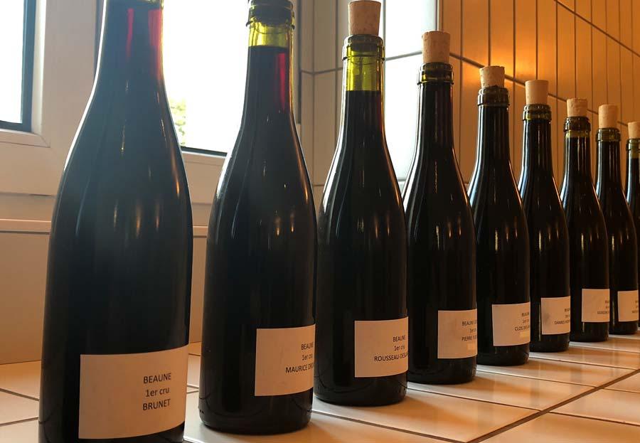 Dégustation des 33 vins rouges avant les enchères des Hospices de Beaune par Albert Bichot