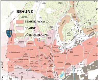 Beaune-1er-Cru-Blanc-Suzanne-Raymond