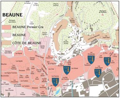 Beaune-1er-Cru-Nicolas-Rolin