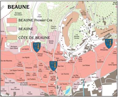 Beaune-1er-cru-guigone-de-Salins