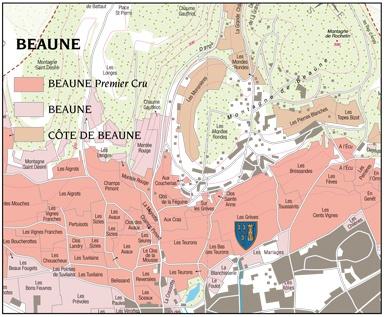 Beaune-Grèves-1er-Cru-Pierre-Floquet-