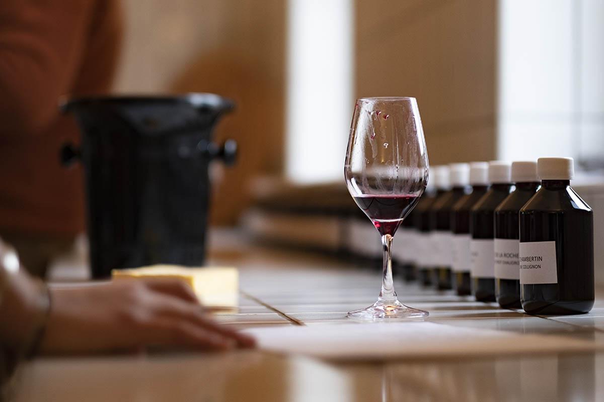 Vidéo : dégustation des 50 vins des Hospices avant les enchères 2020